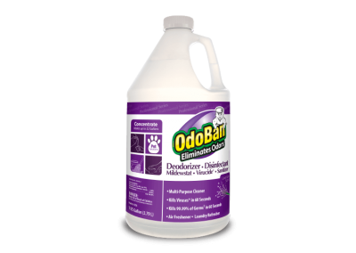 OdoBan® Professional – OdoBan (Lavender) – 11162
