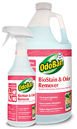BioStain and Odor Remover